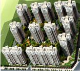 河南建基项目管理